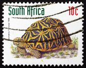 Postage Stamp South Africa 1998 Geometric Tortoise, Reptile