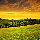 sunset above the national park Sumava - Czech Republic