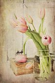 Vintage Pink Tulips