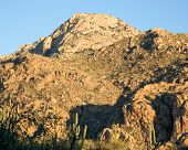 Arizona's Catalina State Park