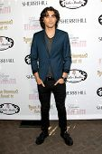 LOS ANGELES - APR 27:  Blake Michael at the Ryan Newman's Glitz and Glam Sweet 16 birthday party at
