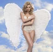 pic of silk lingerie  - Photo of sexy blonde woman with long hair wearing angel - JPG