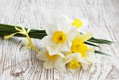 pic of daffodils  - Spring Daffodils on a old wooden Background - JPG
