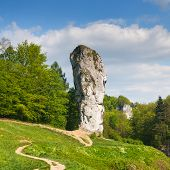 Maczuga Herkulesa, Rock In National Ojcow Park, Poland