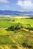 beautiful idyllic  landscapes of Tuscany. Italy