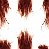 Brown Hairs Isolated