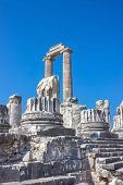 Ancient Temple Of Apollo