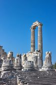 Temple Of Apollo In Didim