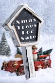 Christmas trees for sale sign with vintage red truck carrying trees in background