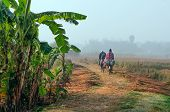 Indian Rural Men Cycling Working In The Field