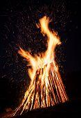 picture of bonfire  - Big bonfire at night - JPG
