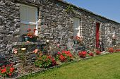 Scenic Rural Irish Cottage With Bicycle And Roses