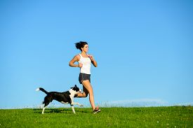 stock photo of working-dogs  - Woman and dog running and exercising outdoor at grass field on summer or spring - JPG
