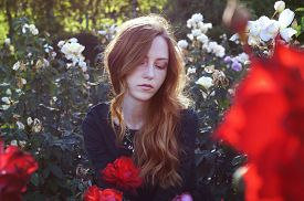stock photo of auburn  - Young caucasian woman with auburn hair sitting in the rose garden in the sunset light