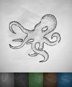 foto of octopus  - octopus icon - JPG