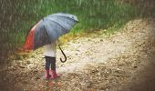 picture of rain  - happy baby girl with an umbrella in the rain runs through the puddles - JPG