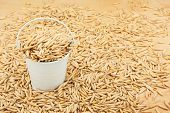 pic of bucket  - White bucket with grain oat on the wooden floor as a background - JPG