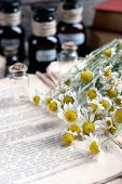 image of roughage  - Old book with dry flowers and bottles on table close up - JPG