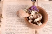 stock photo of roughage  - Old book with dry flowers in mortar close up - JPG