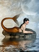 picture of mermaid  - Fantasy landscape with mermaid in the ocean - JPG