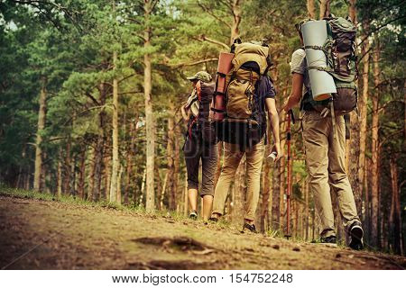 Adventure and hiking. Group of young people make a hike in mountains. Active lifestyle. Tourist equi