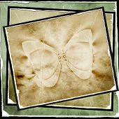 Vintage Butterfly Picture