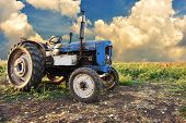 stock photo of tractor  - Very old tractor in field - JPG