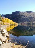 Fall Foliage Around Central California Lake
