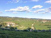 Countryside Landscape, Vineyards In Valpolicella, Province Of Verona, Northern Italy, Italy. Landsca poster
