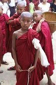 Young Boy Novice Monk Myanmar