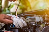 Mechanic Repairing Car With Hand Of Car Mechanic Checking Level Engine Oil For Maintenance . poster
