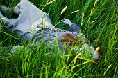 Dead Woman Laying in Grass