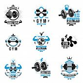 Set Of Vector Fitness Workout And Weightlifting Gymnasium Theme Logotypes And Inspiring Posters Made poster