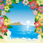 foto of summer beach  - Tropical Beach - JPG