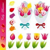 Tulip blossom icons set . Illustration vector.