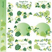 Monstera Elements. Illustration vector.