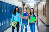 Group of Junior High school Students standing together in a school hallway. Female classmates smilin poster