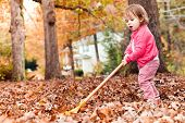 Toddler Girl Raking Leaves In Autumn Outside poster