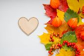 Autumn Thanksgiving Background With Wooden Heart.autumn Still Life. Colorful Maple Autumn Leaves, Ro poster