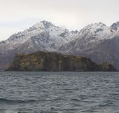 Kodiak Coast