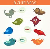 8 cute birds