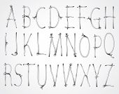Vector curly wire font