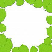 Quadro de folhas verdes sobre fundo branco, caindo de sombras
