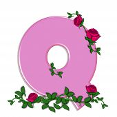 picture of climbing roses  - The letter Q in the alphabet set Blushing Roses is soft pink - JPG
