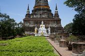 The Buddha status of wat yaichaimongkon at ayuttaya province,Thailand