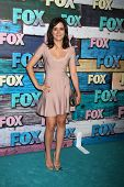 LOS ANGELES - JUL 23:  Shannon Woodward, arrives at the FOX TCA Summer 2012 Party at Soho House on J
