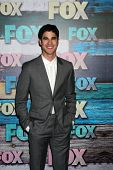 LOS ANGELES - JUL 23:  Darren Criss arrives at the FOX TCA Summer 2012 Party at Soho House on July 2