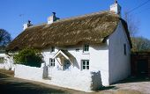 A traditional thatched cottage, several hundred years old, at Oxwich, Gower, South Wales.