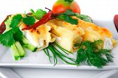 cheese cannelloni served with greenery on white dish
