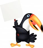 Toucan bird with blank sign